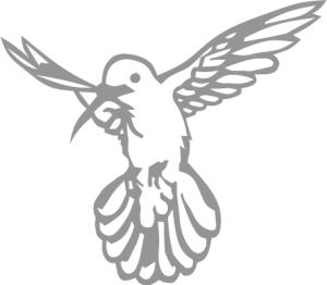 grey birdie